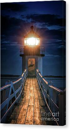 To The Light Canvas Print by Scott Thorp