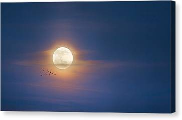 To The Moon Canvas Print by Bill Wakeley
