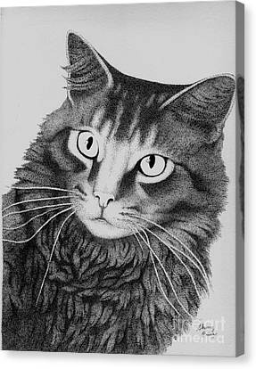 To Thine Own Cat Be True Canvas Print by Sherry Price