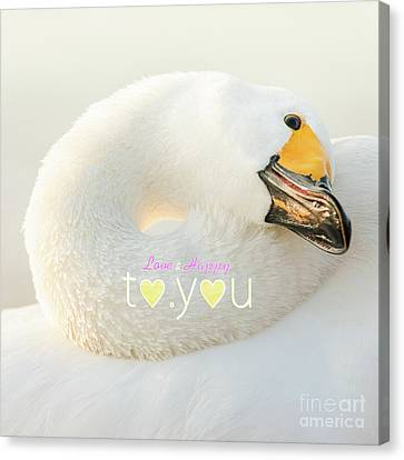 To You #001 Canvas Print