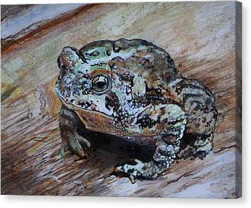 Toad Prince Canvas Print