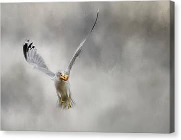 Toast For Breakfast Bird Art Canvas Print