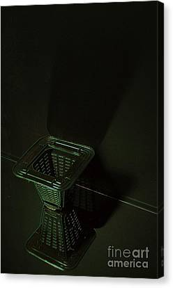 Toasted Shadows Canvas Print by The Stone Age
