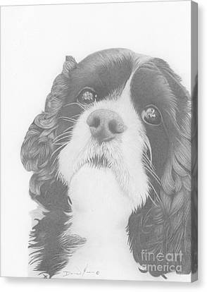Toby Canvas Print