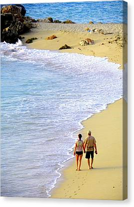 Together Alone Canvas Print by Karen Wiles