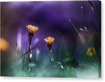 Together Canvas Print by Bulik Elena