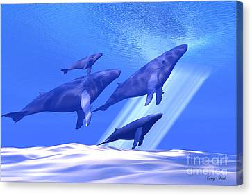 Together Canvas Print by Corey Ford