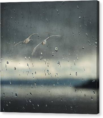 Canvas Print featuring the photograph Together In The Rain by Sally Banfill