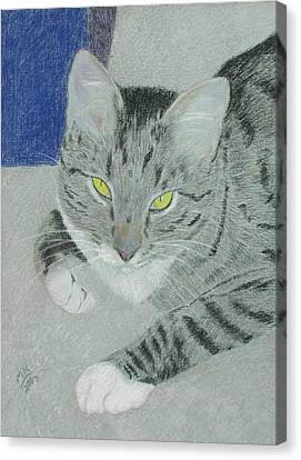 Tom Bombadil Canvas Print by Miriam A Kilmer