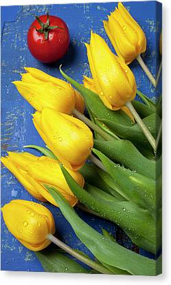 Tomato And Tulips Canvas Print by Garry Gay