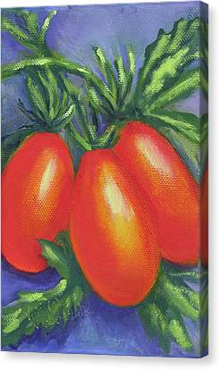 Tomato Seed Packet Canvas Print