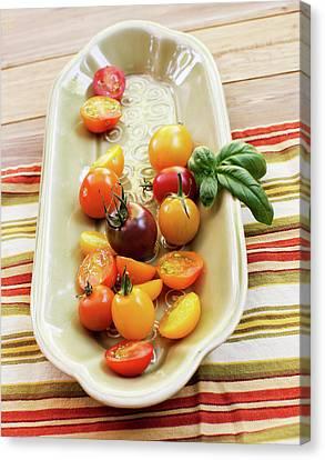 Tomato Still Life 4 Canvas Print