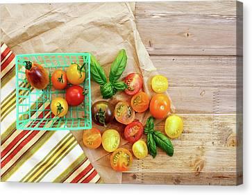 Tomato Still Life 6 Canvas Print