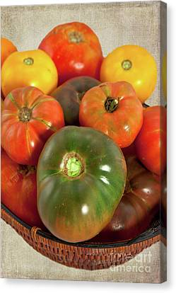 Canvas Print featuring the photograph Tomatoes In A Basket by Dan Carmichael