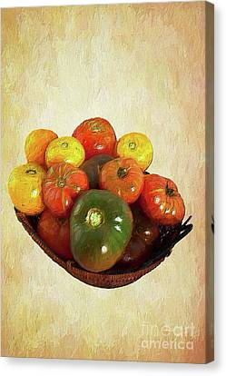 Canvas Print featuring the painting Tomatoes In A Basket Wide Ap by Dan Carmichael