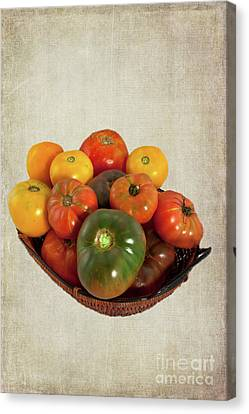 Canvas Print featuring the photograph Tomatoes In A Basket Wide by Dan Carmichael