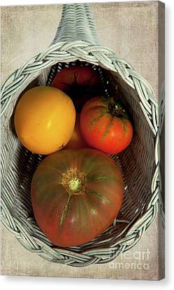 Canvas Print featuring the photograph Tomatoes In A Horn Of Plenty Basket 2 by Dan Carmichael
