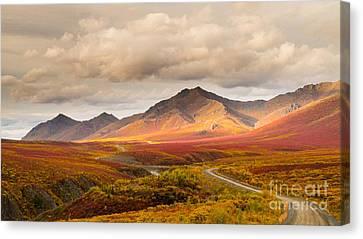 Tombstone Territorial Park Yukon Canvas Print by Rod Jellison
