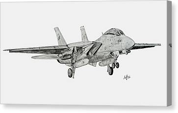 Tomcat Almost Home Canvas Print by Nicholas Linehan
