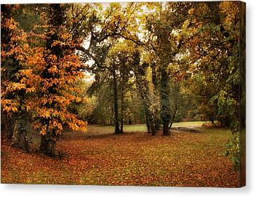 Tones Of Autumn Canvas Print by Jessica Jenney