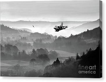 Tonka Duo Canvas Print by J Biggadike