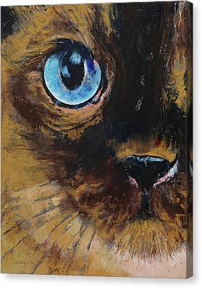 Tonkinese Canvas Print by Michael Creese