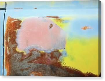 Tonopah Rust I Canvas Print by Christian Heeb