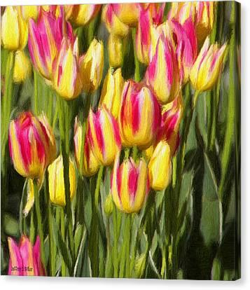 Too Many Tulips Canvas Print by Jeffrey Kolker