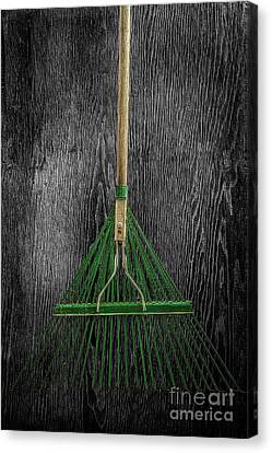 Tools On Wood 10 On Bw Canvas Print by YoPedro