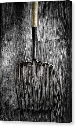 Tools On Wood 25 On Bw Canvas Print by YoPedro