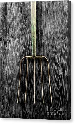 Canvas Print featuring the photograph Tools On Wood 7 On Bw by YoPedro