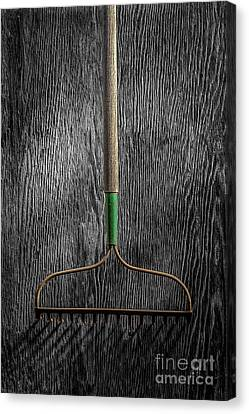 Tools On Wood 8 On Bw Canvas Print by YoPedro