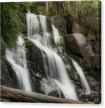 Toorongo Falls Canvas Print