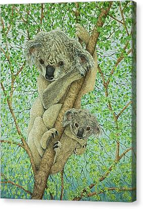 Top Of The Tree Canvas Print by Pat Scott