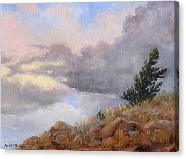 Topaz Skies Canvas Print by Debra Mickelson
