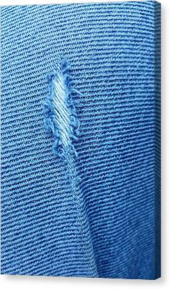 Torn Jeans  Canvas Print by Rob Hans