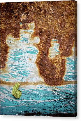 Torn Leaf On Rusted Metal Canvas Print