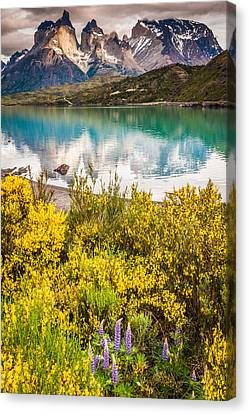 Chile Canvas Print - Torres Del Paine Reflection - Patagonia Photograph by Duane Miller