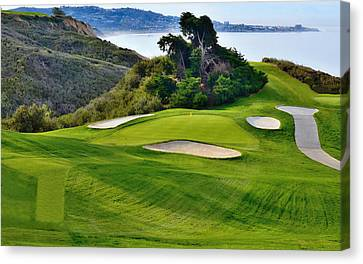 Torrey Pines North No. 6 Canvas Print by See My Photos