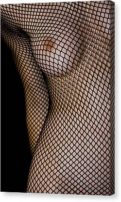 Torso In Fish-net Canvas Print by Gabor Pozsgai