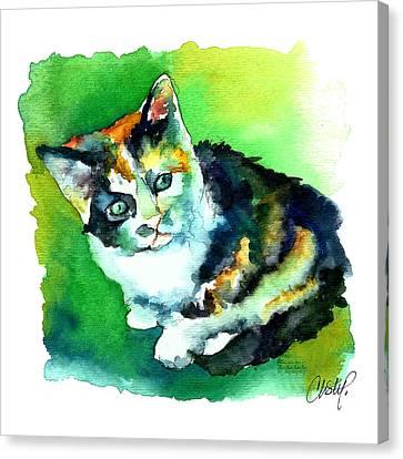 Tortoise Shell Kitten Canvas Print by Christy  Freeman