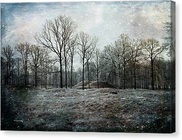 Total Absence Canvas Print by Randi Grace Nilsberg