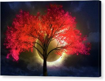 Park Scene Canvas Print - Total Eclipse by Debra and Dave Vanderlaan