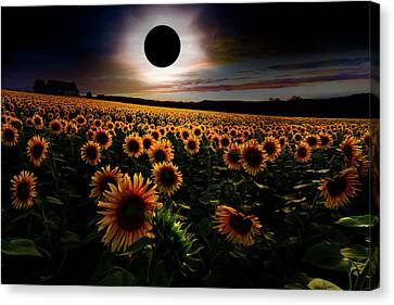 Totality Canvas Print - Total Eclipse Over The Sunflower Field by Debra and Dave Vanderlaan