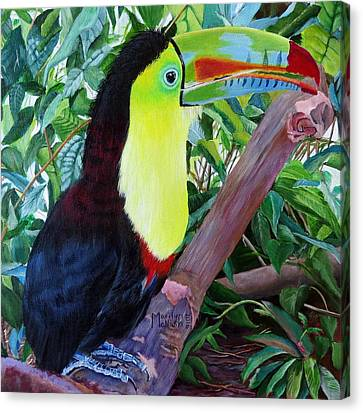 Toucan Portrait 2 Canvas Print by Marilyn McNish