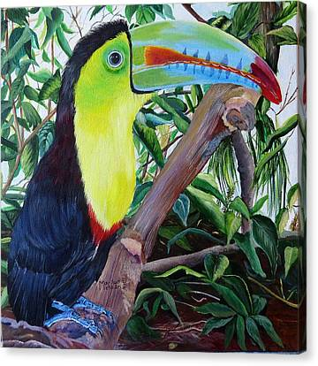 Toucan Portrait Canvas Print by Marilyn McNish
