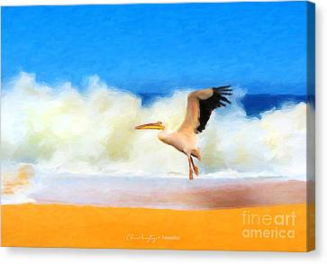 Touch Down Canvas Print