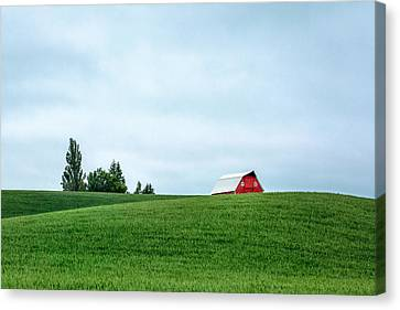 Touch Of Red Canvas Print by Todd Klassy