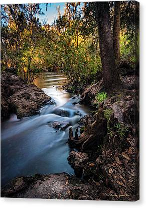 Rapids Canvas Print - Touchable Soft by Marvin Spates