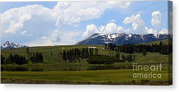 Touching Beauty Canvas Print by Christiane Schulze Art And Photography